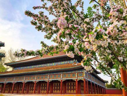 """""""小西天""""主殿占地面积1246平方米,是世界上最大的方亭式建筑。"""